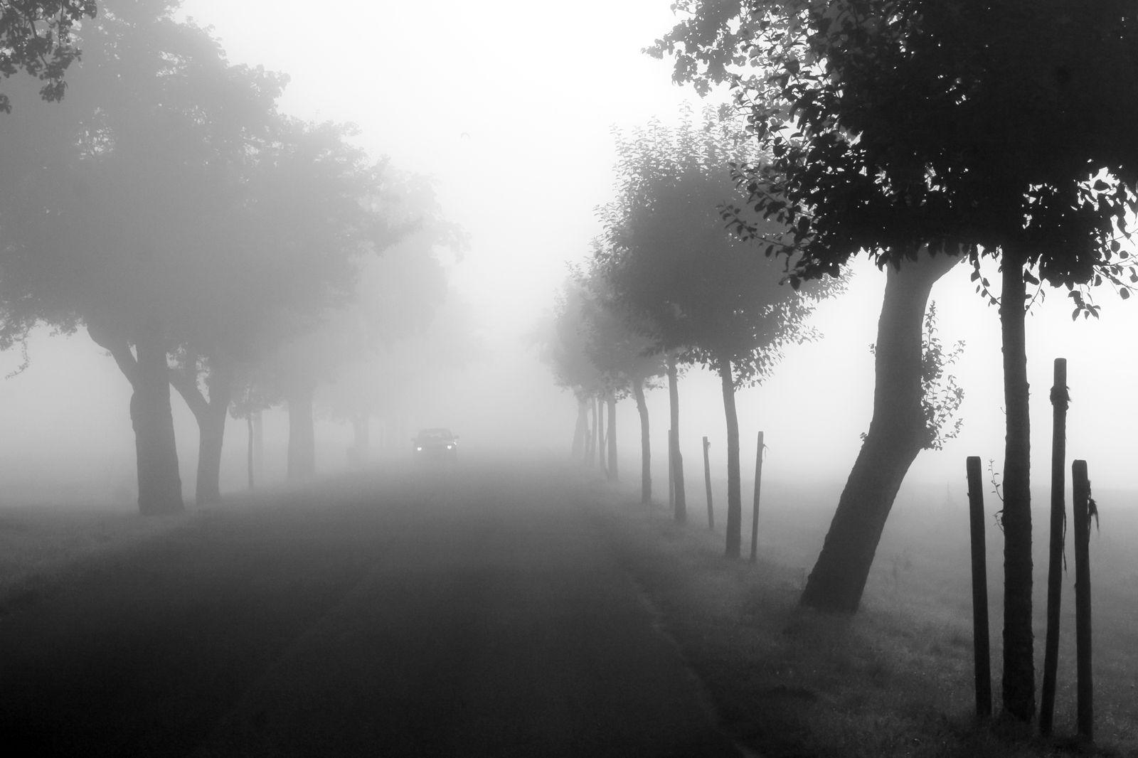 herbst-winter_002